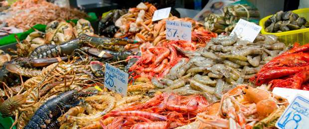 Seafood supplier/exporter of Halal fish - Argentina Paraguay