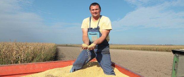 Soybean supplier of USA, Brazil & Argentina  Non-GMO exporter